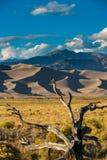 Wielki piasek diun park narodowy Kolorado Obraz Stock