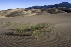 Wielki piasek diun park narodowy w Południowym Kolorado Obraz Stock
