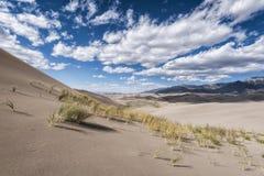 Wielki Piaska Diun Park Narodowy, Kolorado, USA Zdjęcie Royalty Free