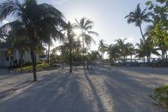 Wielki pocięgla Cay palmy zmierzch Obrazy Stock