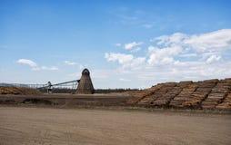 Wielki przemysłowy drewnianego układu scalonego palnik ar tartak Fotografia Stock