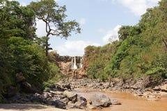 Wielki rift valley, Etiopia, Afryka Zdjęcia Royalty Free