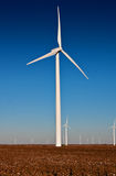 Wielki silnik wiatrowy w Bawełnianym polu Zdjęcie Royalty Free
