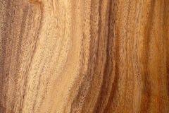 wielki tekstury drewno drzew Zdjęcie Royalty Free