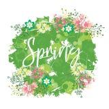 Wielki wiosna bukiet, różnorodność wiosna kwitnie na jaskrawym łaciastym tle Wiosna skład dla kart royalty ilustracja