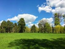 Wielki wiosna dzień fotografia stock