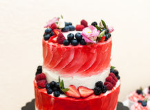 Wielki wyśmienicie truskawka tort Zdjęcia Royalty Free