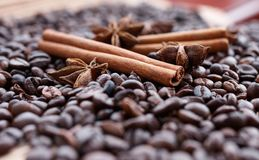 Wielkie aromatyczne kawowe fasole, anyżowa pikantność dla cukierków, torty, cynamonowi kije i cloves, Różni rodzaje pikantność Obrazy Stock