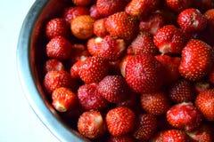 Wielkie czerwone jagody soczysta truskawka są w pucharze Zdjęcie Stock
