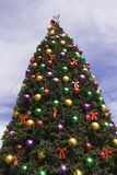 wielkie drzewo świąt Zdjęcia Royalty Free