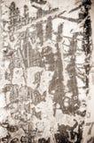 wielkie tekstury tło Obraz Royalty Free