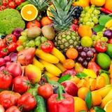 Wielkiej kolekci owoc i warzywo zdrowe jedzenie Obraz Stock