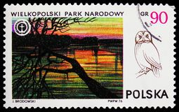 Wielkopolski National Park and Tawny Owl Strix aluco, National Parks serie, circa 1976. MOSCOW, RUSSIA - FEBRUARY 21, 2019: A stamp printed in Poland shows stock photography