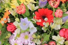 Wielo- barwioni ślubów kwiaty Obraz Stock