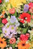 Wielo- barwioni ślubów kwiaty Fotografia Royalty Free