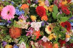Wielo- barwioni ślubów kwiaty Fotografia Stock