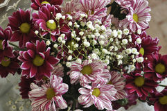 Wielo- koloru bukiet z taki kwiatem jak dalii i chryzantemy Zdjęcia Royalty Free