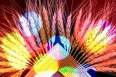 Wielo- koloru tekstury pszeniczny tło Obrazy Royalty Free