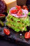 Wielo- płatowata świetlicowa kanapka z żyto chlebem, sałaty sałatką, kiełbasą, serem, solonymi ogórkami i pomidorami, obrazy royalty free