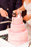 Wielo- poziom menchii ślubny tort fotografia stock