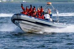 Wieloryb i maskonur objeżdżamy łódź out w oceanie w Reykjavik, Iceland obrazy royalty free