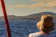 Wielorybi dopatrywanie zdjęcie stock