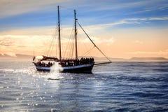 Wielorybi dopatrywanie zdjęcia royalty free