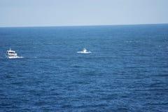 Wielorybia dopatrywanie łódź, Humpback wieloryb i łydka, Zdjęcie Royalty Free