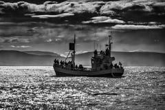 Wielorybia dopatrywanie łódź w Husavik zdjęcia royalty free