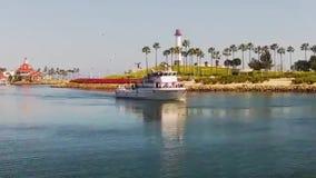 Wielorybia dopatrywanie wycieczki turysycznej łódź podążał okrążać seagulls zdjęcie wideo