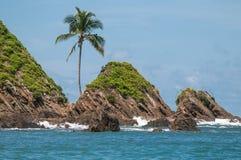 Wielorybia wyspa Fotografia Royalty Free