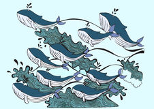 Wieloryby bawić się w morzu Fotografia Royalty Free