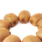 Wieloskładnikowi kiwifruits wyrównujący w okręgu Obrazy Royalty Free