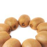 Wieloskładnikowi kiwifruits wyrównujący w okręgu Zdjęcia Royalty Free