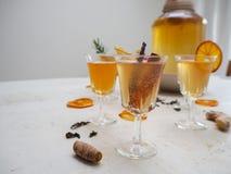Wieloskładnikowi szkła z różnorodność sosowaną kombucha herbatą tak jak cynamon, cytrus, turmeric i rozmaryny, zdjęcie royalty free