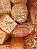Wieloskładnikowi typy chlebowy świeży piec w piekarni obraz stock