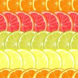Wielostrzałowy bezszwowy wzór różni cytrusy ilustracji