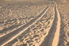 Wieltekens in het zand Autosporen Woestijn stock afbeelding