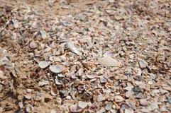 wielu morza naboje tylnego tła pięknego błękitny cloudscape złoty oceanu piaska morze Zdjęcia Stock