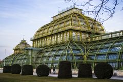Wien, Österreich 1. März 2019 Errichten eines Gewächshauses der Kräuter und der Blumen Das Glasgebäude mit Metallgrüneinsätzen lizenzfreies stockbild