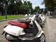 Wien Österrike - Augusti 3, 2014: en rad av sparkcyklar som parkeras på gatan nära Burggartenen, arbeta i trädgården på en ljus s Royaltyfria Foton