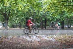 Wien Österrike: Cyklister i Prateren parkerar royaltyfria foton
