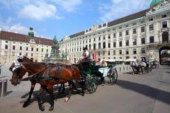 Wien Arkivfoton