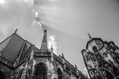 Wien - domkyrka för St Stephan, Österrike, Wien Royaltyfri Fotografi