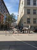Wien gata royaltyfri foto