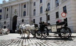 Wien - hästar med vagnen (Fiaker) Arkivbilder
