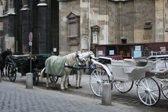 Wien, les DOM photographie stock