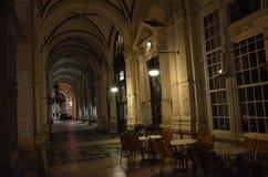 Wien nattgata Royaltyfri Bild