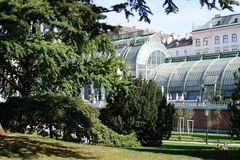 Wien Palmhouse arkivbild