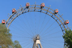 Wien-riesiges Fähre-Rad (Riesenrad) Stockfotografie